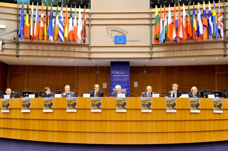 pac-consiglio-ministri-commissione-2011.jpg