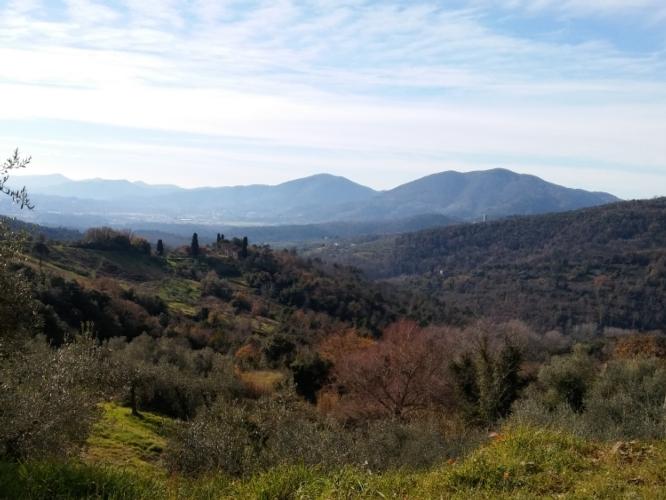 paesaggio-collina-by-matteo-giusti-agronotizie