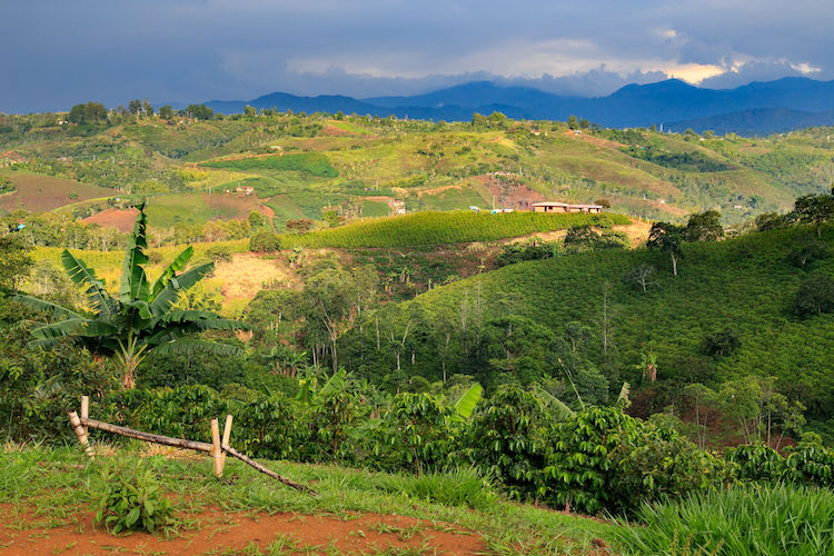 Colombia atracción, il supporto alle Pmi emiliano-romagnole
