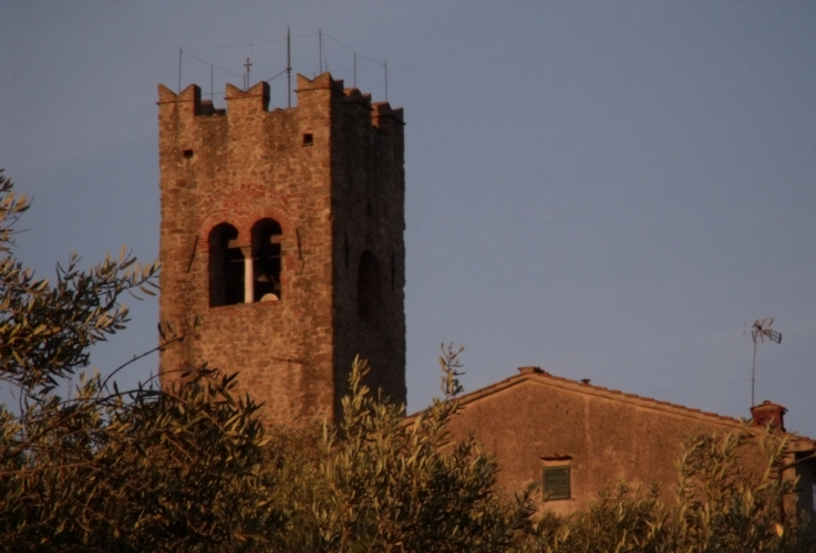 paesaggio-rurale-beni-culturali-olivi-campanile-by-matteo-giusti-agronotizie-jpg.jpg