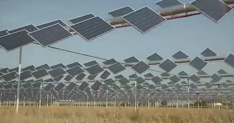pannelli-agrovoltaico-schermata-video-barbara-righini-fonte-societa-rem-tec-srl