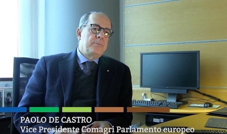 paolo-de-castro-vicepresidente-comagri-parlamento-europeo-fonte-alessio-pisano.jpg