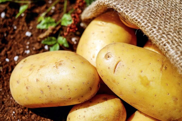 patata-tubero-bycouler-pixbay-750x500-15850601920.jpg