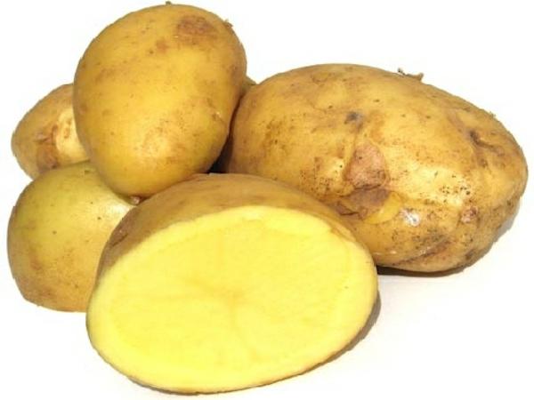 patate-fonte-ilsa