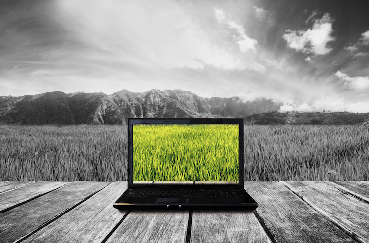 pc-computer-bianco-e-nero-internet-agricoltura-by-sasinparaksa-adobe-stock-750x494.jpeg
