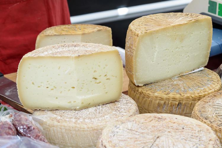 pecorino-di-sardegna-formaggio-sardo-by-osmar01-adobe-stock-750x500