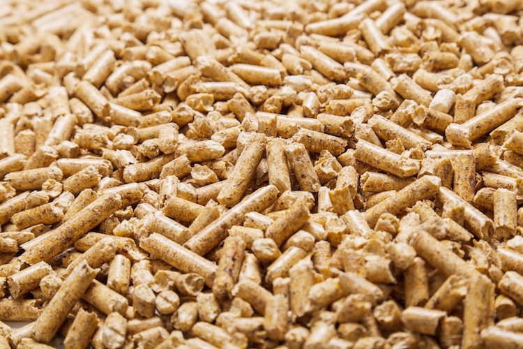 pellet-biomasse-by-yeko-photo-studio-fotolia-750