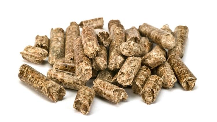 pellet-di-biomasse-residue-terzo-art-mar-rosato-fonte-biomassmagazine.jpg