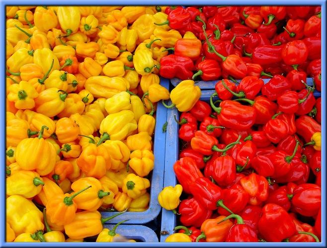 peperone-giallo-rosso-byflickrcc20-David-Evers