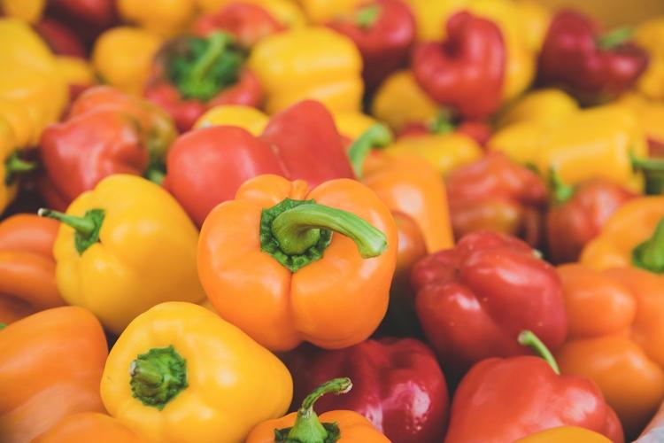 Peperone, coltivazione sempre più al top - Plantgest news sulle varietà di piante