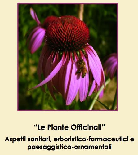 piante-officinali-convegno-alma-mater-studiorum-maggio2010
