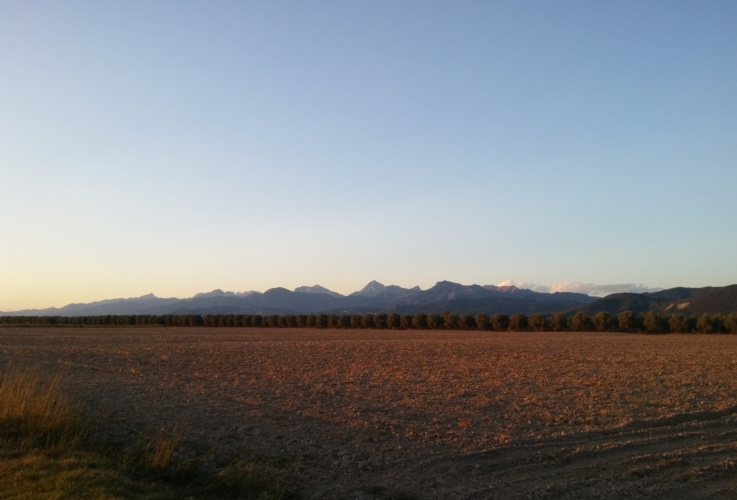 pianura-campi-paesaggio-agrario-by-matteo-giusti-agronotizie-jpg