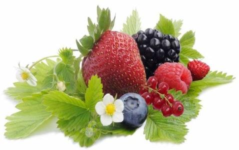 piccoli-frutti-incontro-alsia