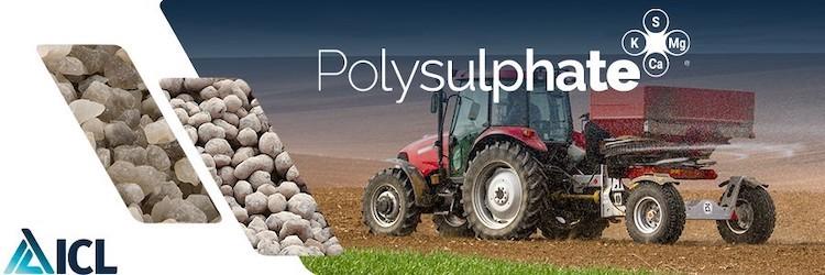 polysulphate-concime-macchina-trattore-copertina-dem-redazionale-settembre-2021-fonte-icl.jpg