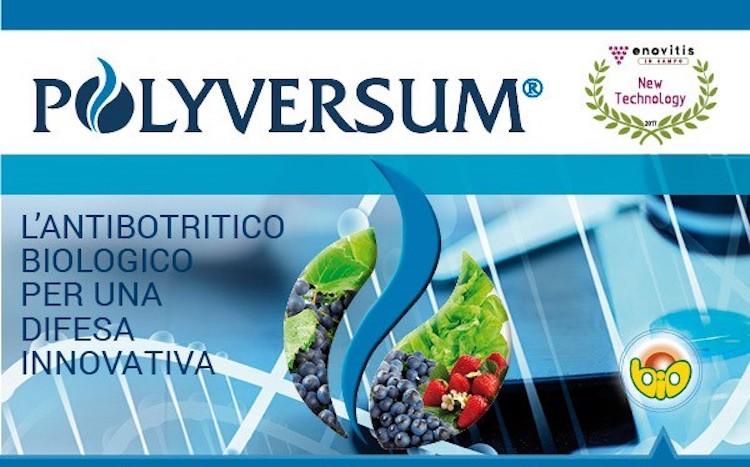 polyversum-antibotritico-biologico-difesa-innovativa-fonte-gowan.jpg
