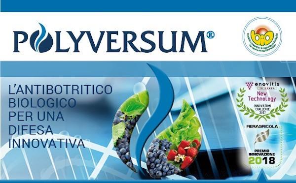 polyversum-fonte-gowan.jpg