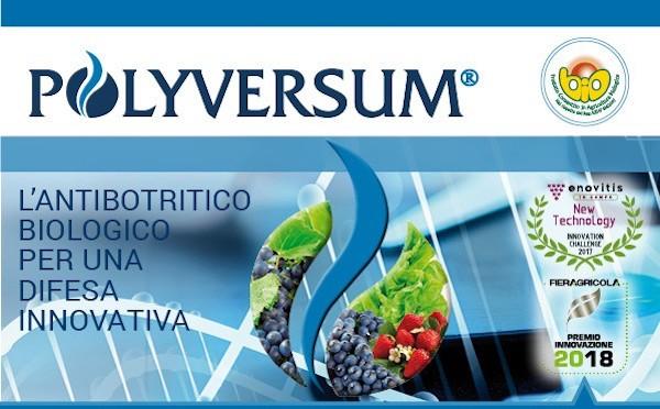 polyversum-fonte-gowan1