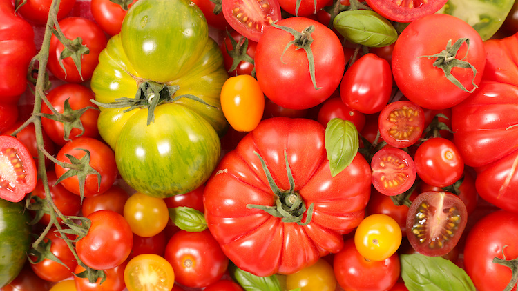 pomodori-pomodoro-by-m-studio-adobe-stock-750x422.jpeg