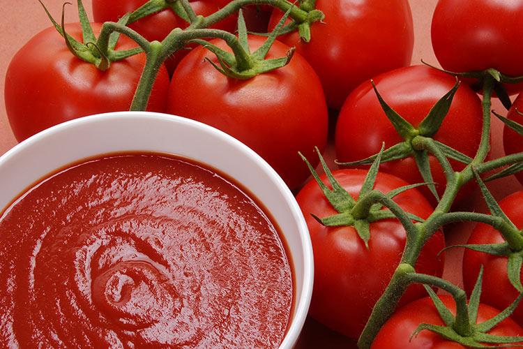 Pomodoro da industria, tante le novità - Plantgest news sulle varietà di piante