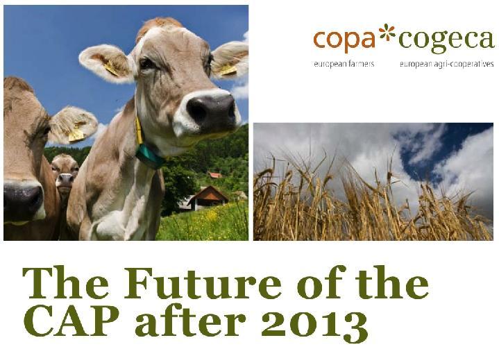position_paper_pac_post_2013_copa_cogeca
