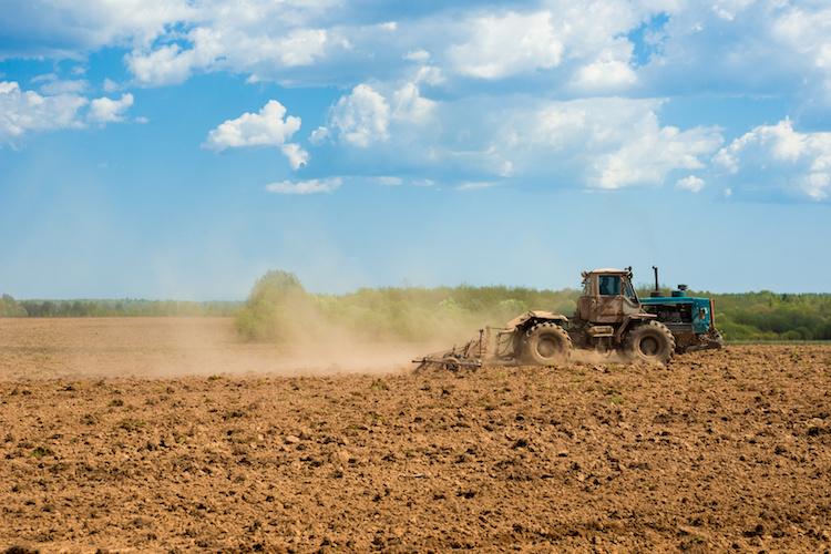 Alla base dei raccolti - le news di Fertilgest sui fertilizzanti