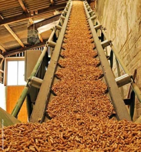 produzione-di-pellet-da-biomassa-legnosa-terzo-art-mag-rosato-fonte-deutsches-pellet-institut