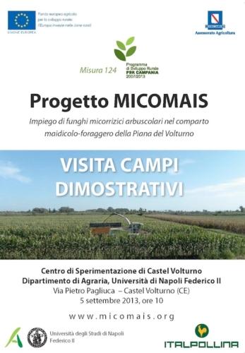 progetto-micomais-italpollina