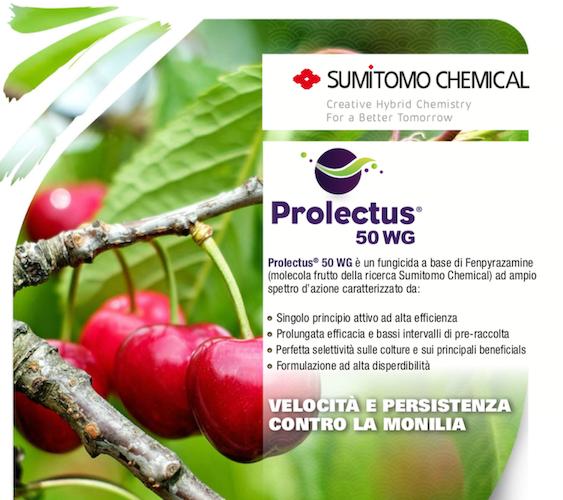 prolectus50wg-fonte-sumitomo