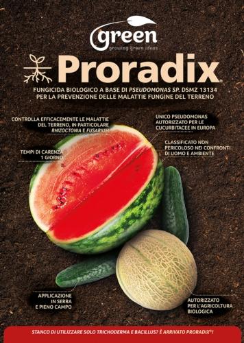 proradix-cucurbitacee-fonte-green-ravenna