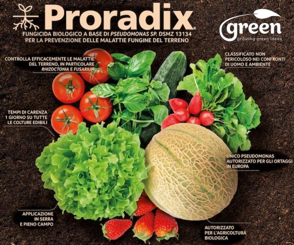 proradix-fonte-green-ravenna
