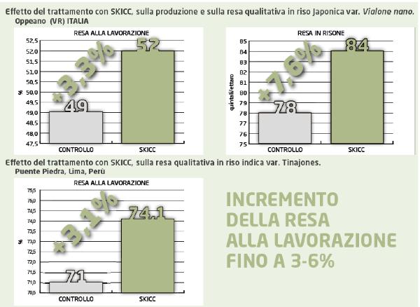 prove-italiane-estere-valutazione-effetto-trattamento-con-skicc-su-riso-anno-2017-fonte-k-adriatica.png