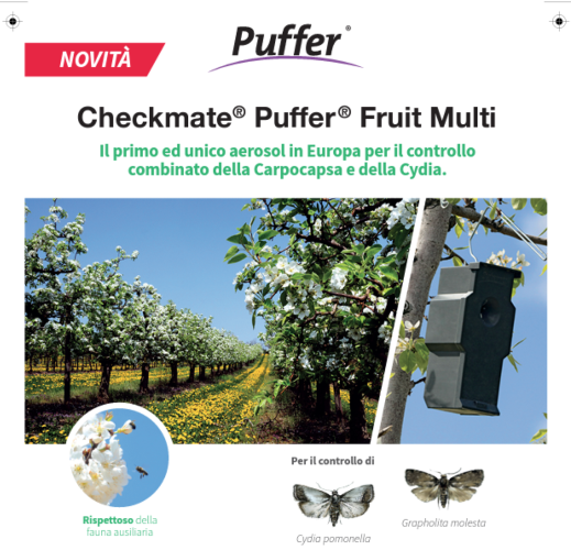 puffer-checkmate-fruit-multi-fonte-suterra