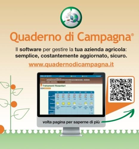 Quaderno di campagna per gestirlo basta una web app for Software di architettura gratuito online