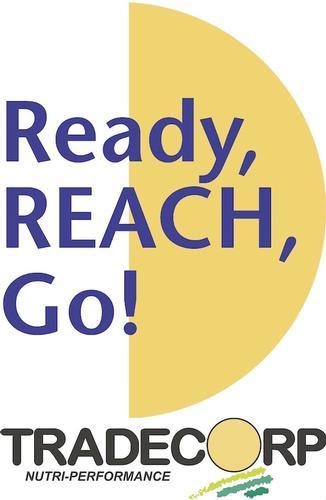 reach_tradecorp1