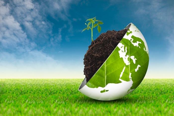 rinnovabili-greening-bioenergie-biocarburanti-biomasse-ambiente-sostenibilita-by-angelo19-fotolia-3888x2592