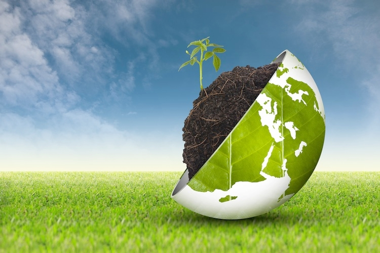 rinnovabili-greening-bioenergie-biocarburanti-biomasse-ambiente-sostenibilita-by-angelo19-fotolia-750x500