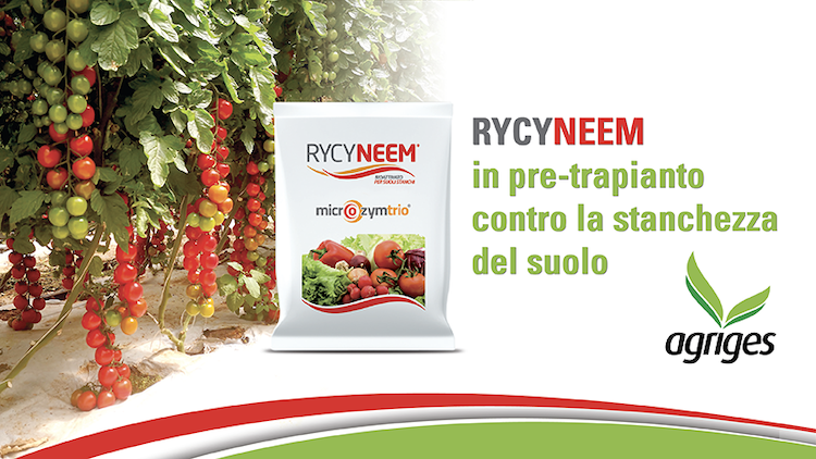 rycyneem-stanchezza-suolo-fonte-agriges.png