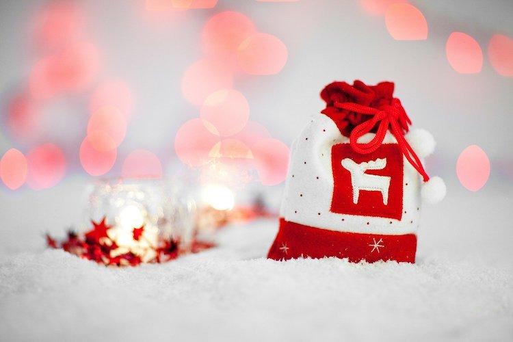 sacco-regali-natale-renna-fonte-publicdomainpictures-via-pixabay