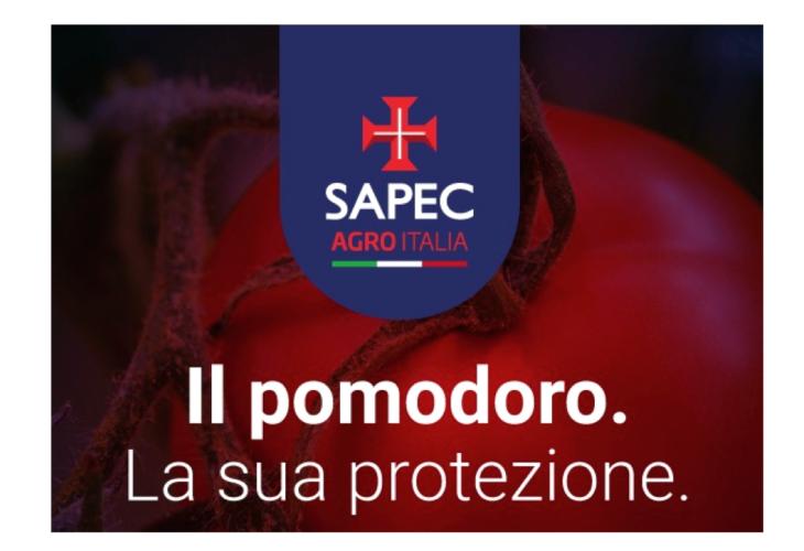 sapec-pomodoro-protezione.png