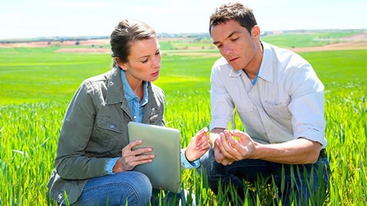 scelta-contatti-innovazione-agricoltura-fonte-basf