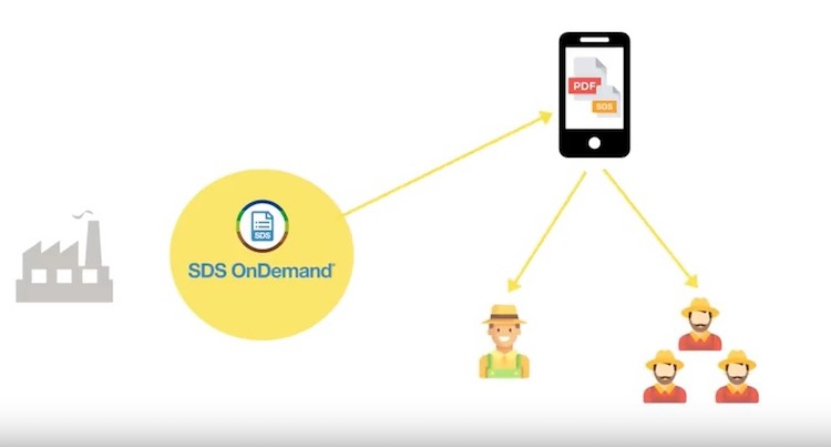 sds-on-demand-disponibili-in-luogo-accessibile-da-video-ivano-valmori.jpg