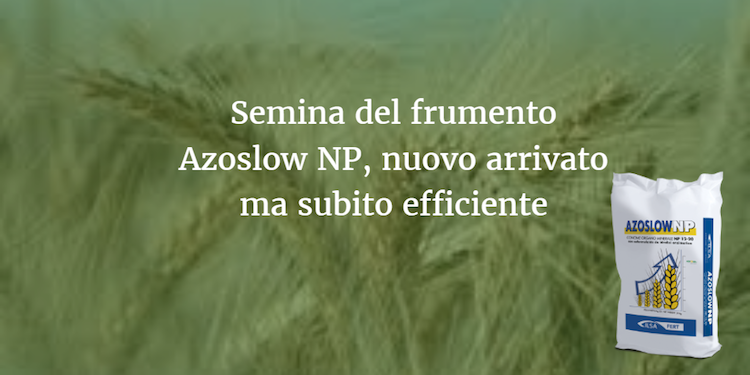 semina-frumento-azoslow-np-fonte-ilsa.png