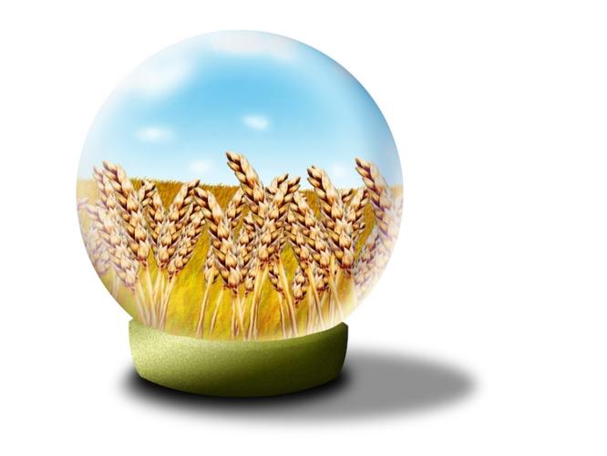 sfera-cristallo-grano-previsioni-by-tamreiart-adobestock-750x563