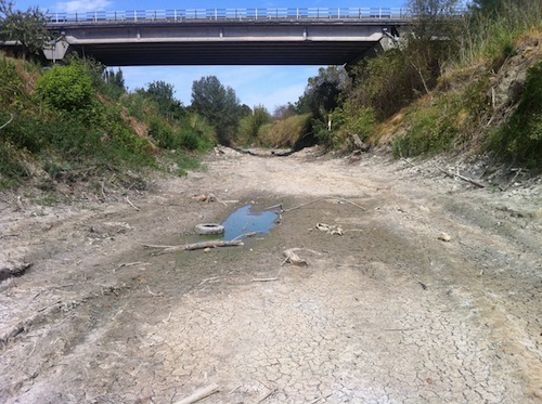 siccita-fiume-lamone-in-secca-faenza-ago2012-fonte-ivano-valmori-imageline-2