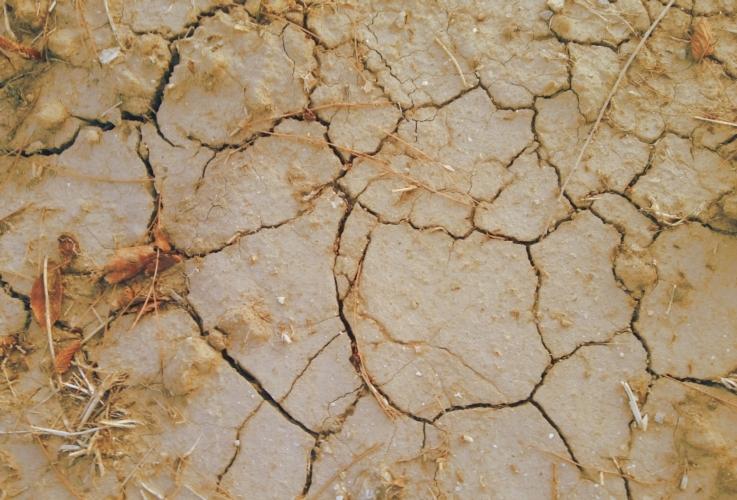 siccita-terra-secca-by-matteo-giusti-agronotizie-jpg