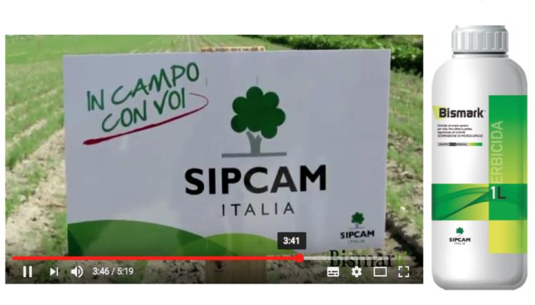 sipcam-bismark-filmato.png