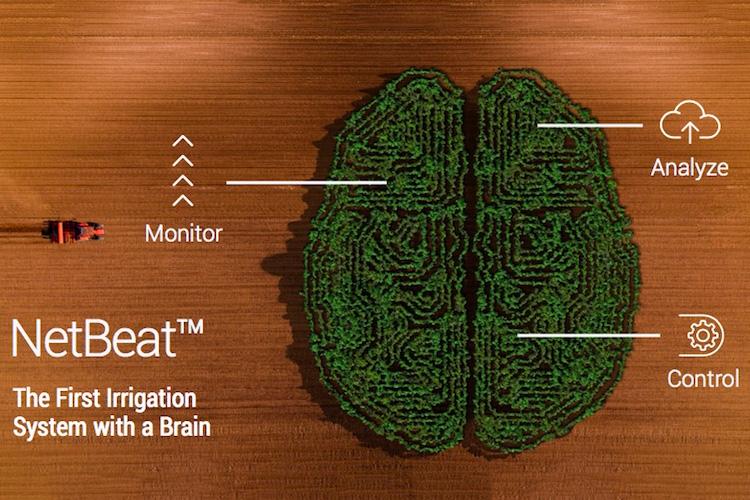 NetBeat<sup>™</sup>: l'irrigazione intelligente è realtà