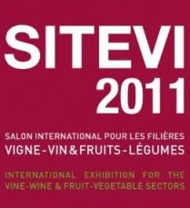 sitevi-2011-logo