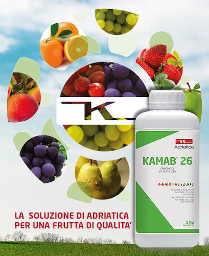 soluzione-adriatica-kamab-26-fonte-adriatica