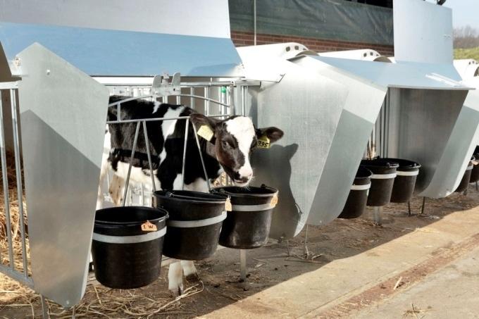 sprayfo-nutreco-biosicurezza-in-vitellaia-redazionale-5-11-giugno-2015